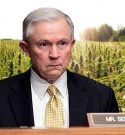 Jeff Sessions Thinks Marijuana is the Same as Heroin