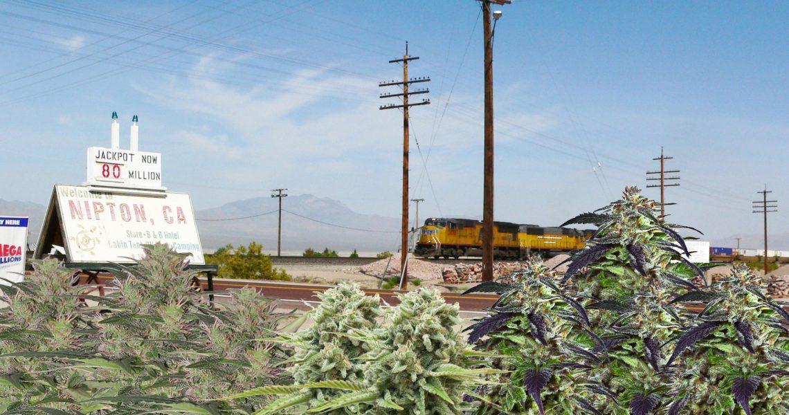 Nipton_California_420